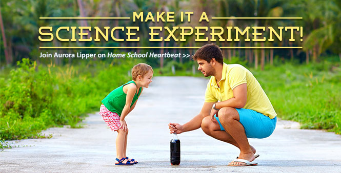 Hear rocket scientist Aurora Lipper's creative ideas for teaching science in your homeschool! Listen now >>