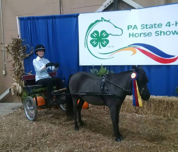 teen-wins-big-with-miniature-horse-competition-text-1